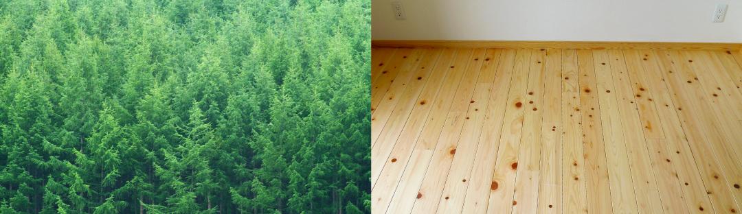 根羽村産の木材